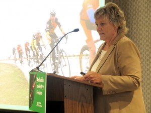 Ann Palmer Arthritis Industry Forum