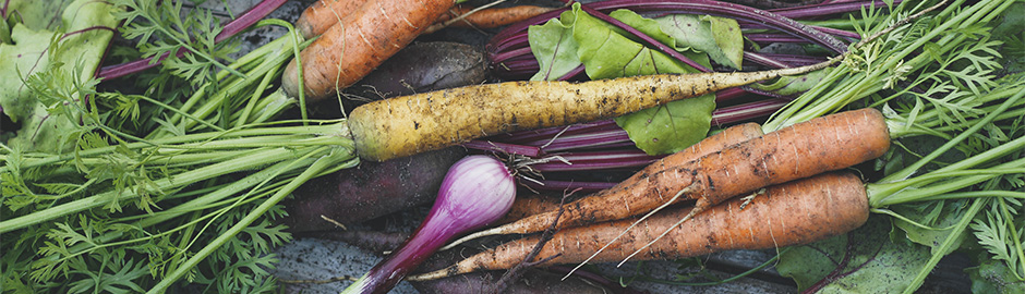 Which Arthritis Diet Plan Should You Try?