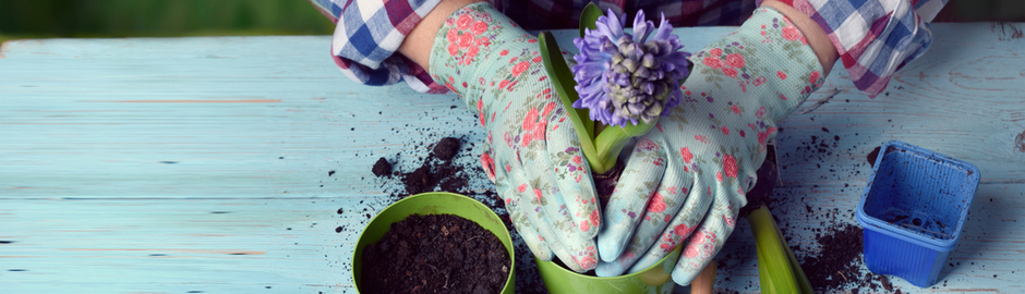 Gardening with Arthritis: Tips for Preventing Joint Pain