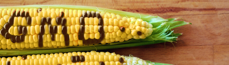 Genetically Modified Foods: What You Should Know